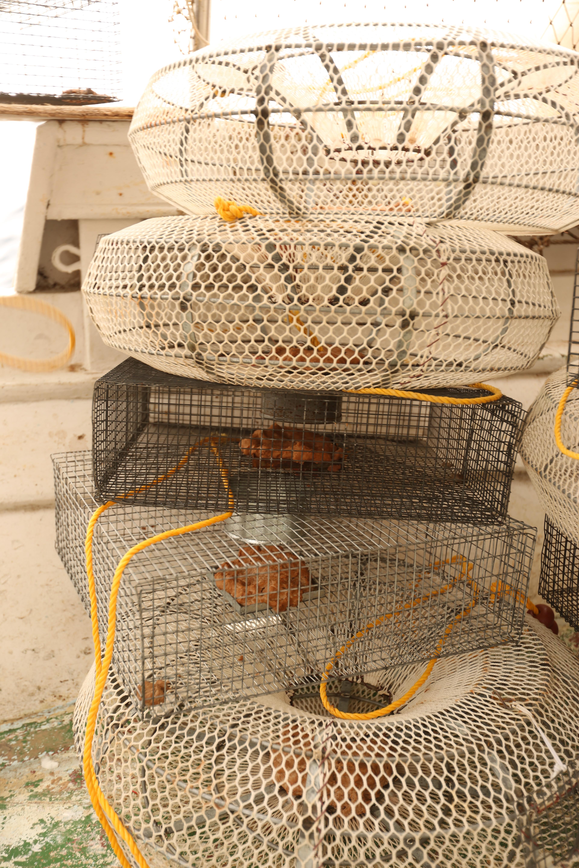 Το αλιευτικό εργαλείο κιούρτους (στρογγυλοί και τετράγωνοι)